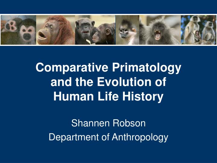Comparative primatology and the evolution of human life history