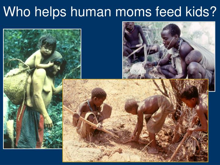 Who helps human moms feed kids?