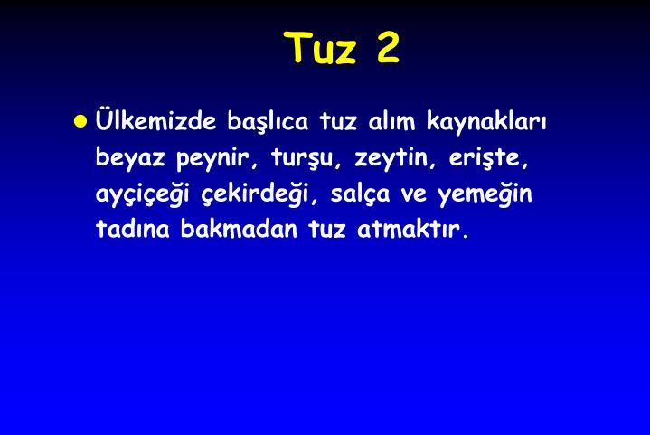 Tuz 2