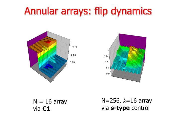 Annular arrays: flip dynamics