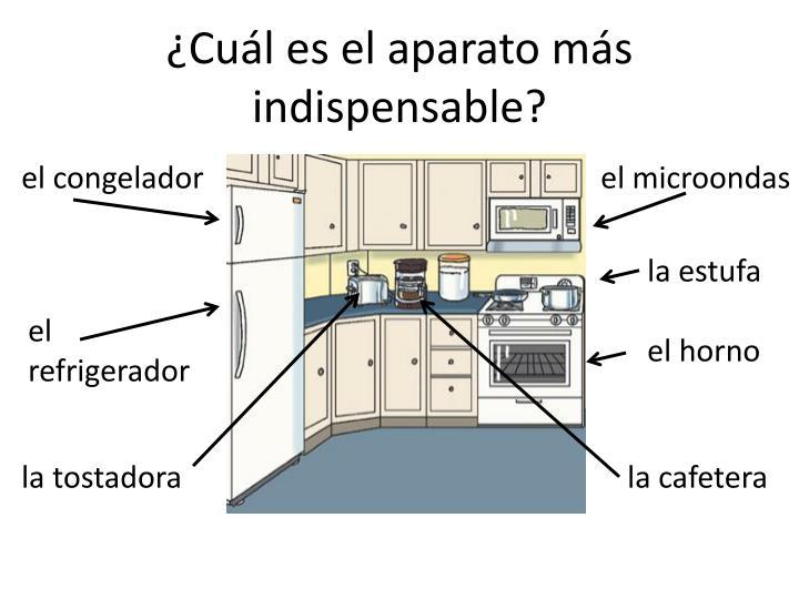 ¿Cuál es el aparato más indispensable?