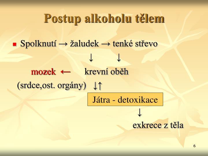 Postup alkoholu tělem