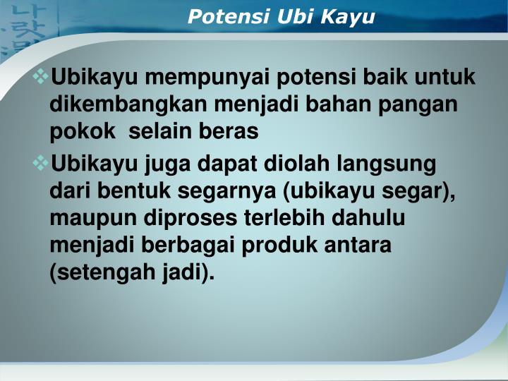 Potensi Ubi Kayu