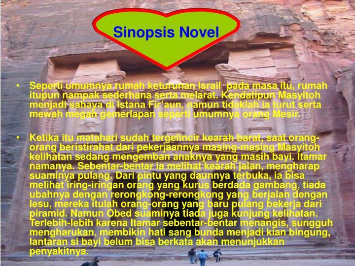 Sinopsis Novel