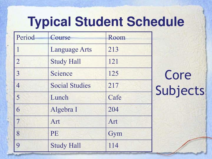 Typical Student Schedule