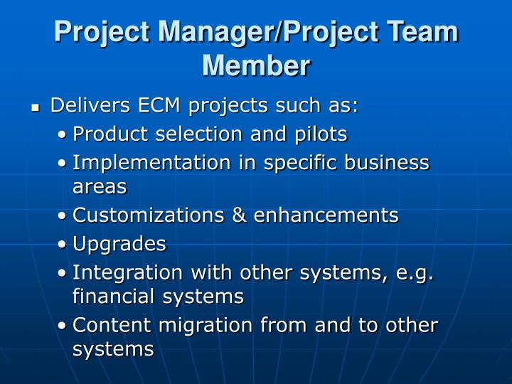 Project Manager/Project Team Member