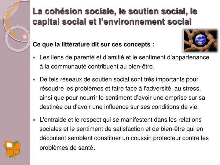 La cohésion sociale, le soutien social, le capital social et l'environnement social