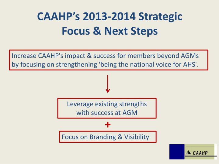 CAAHP's 2013-2014 Strategic