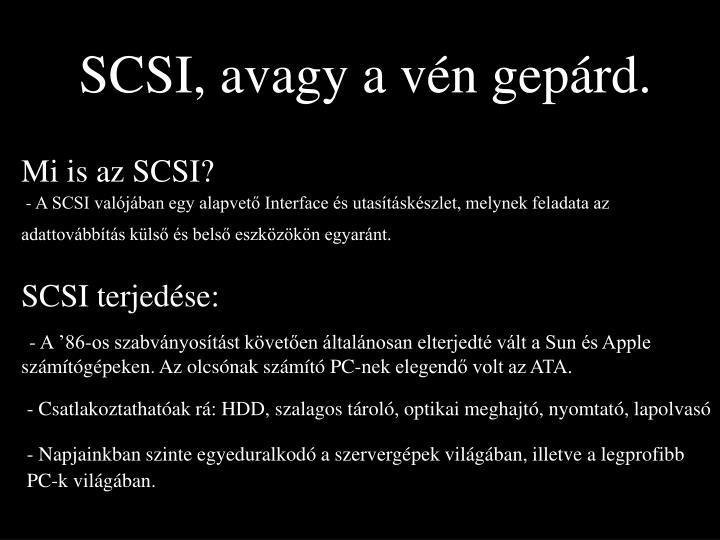 SCSI, avagy a vén gepárd.