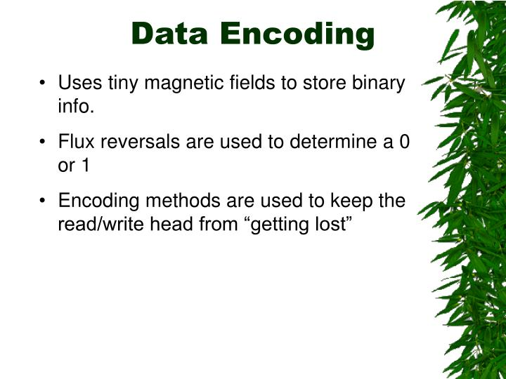 Data Encoding