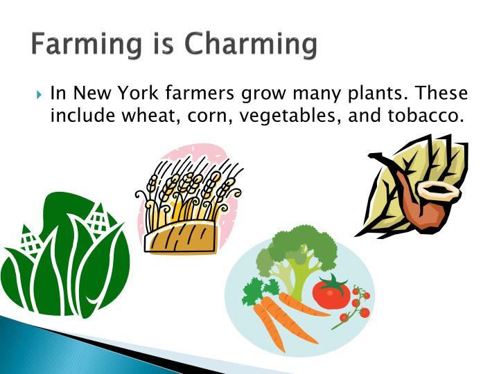 Farming is Charming