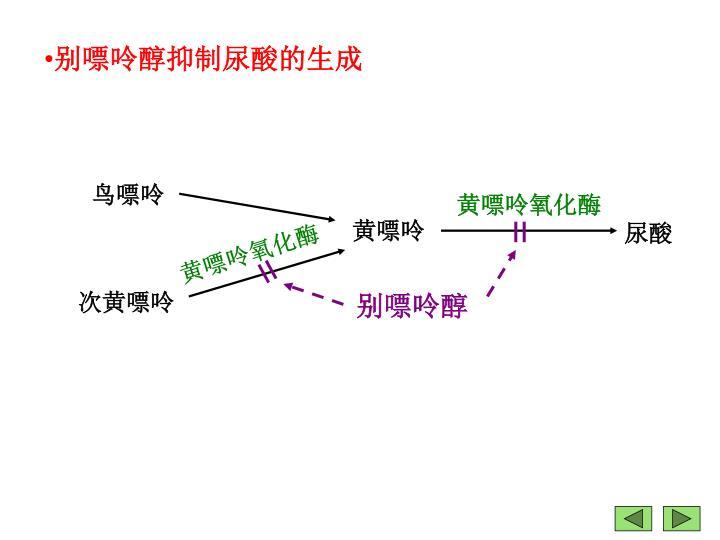 别嘌呤醇抑制尿酸的生成