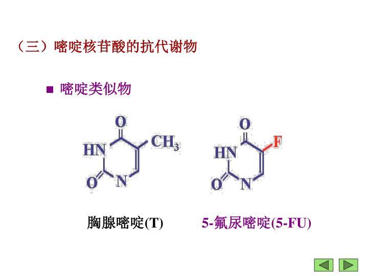(三)嘧啶核苷酸的抗代谢物