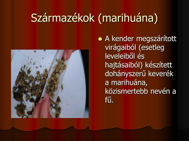 Szrmazkok (marihuna)