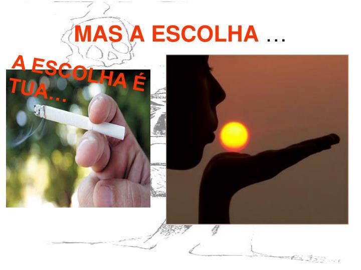 MAS A ESCOLHA