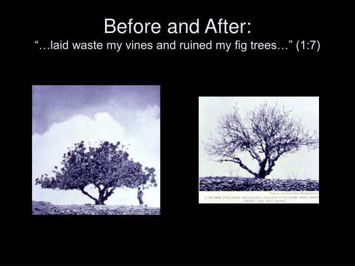 Before and After: