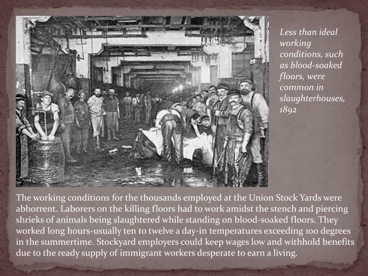 Less than ideal working conditions, such as blood-soaked floors, were common in slaughterhouses, 1892