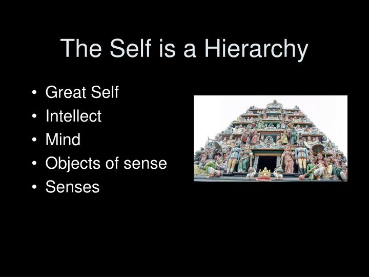 The Self is a Hierarchy