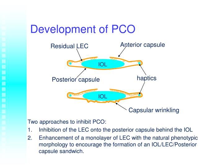 Development of PCO