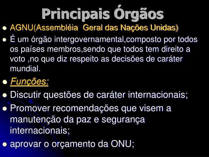 Principais Órgãos