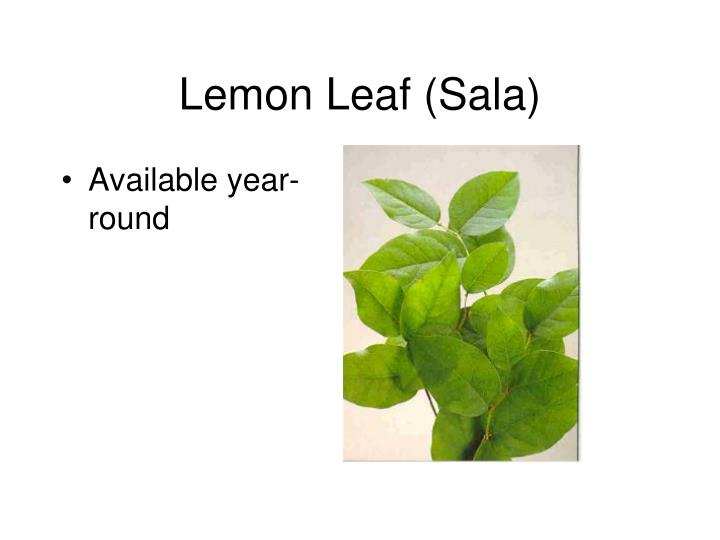 Lemon Leaf (Sala)