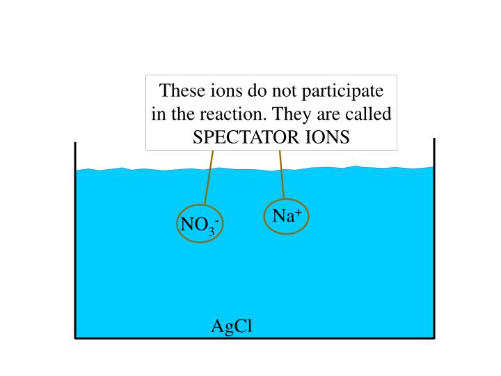 These ions do not participate