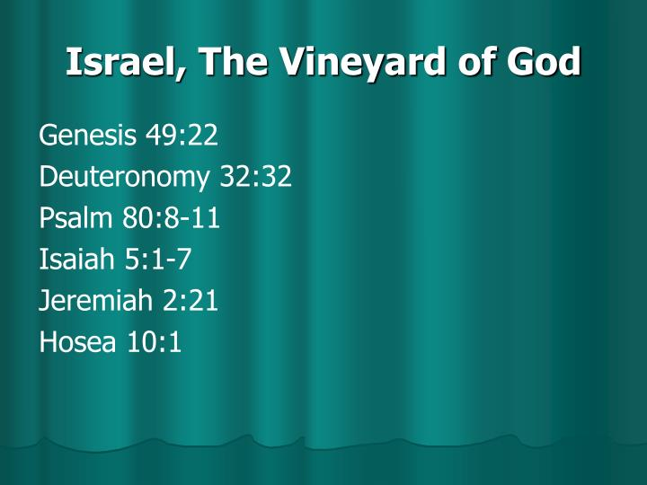 Israel, The Vineyard of God