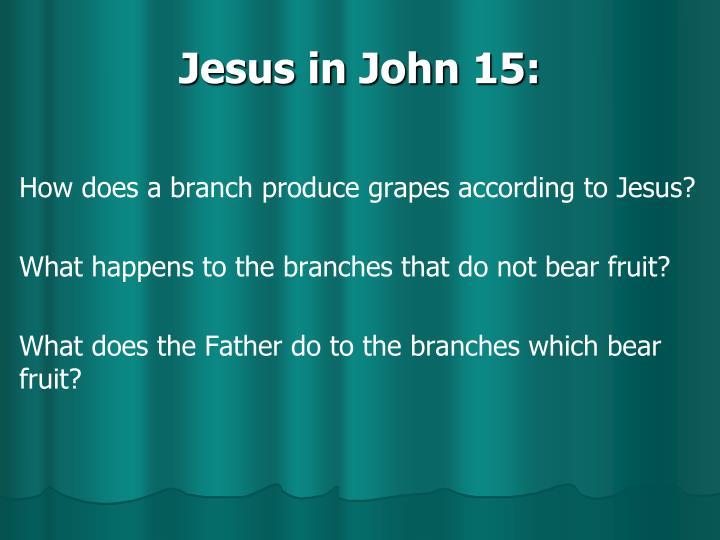 Jesus in John 15: