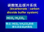 bicarbonate carbon dioxide buffer system