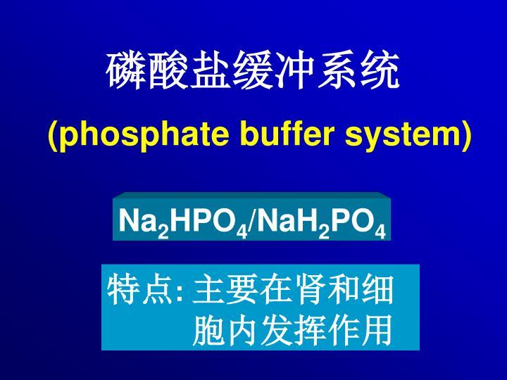 磷酸盐缓冲系统