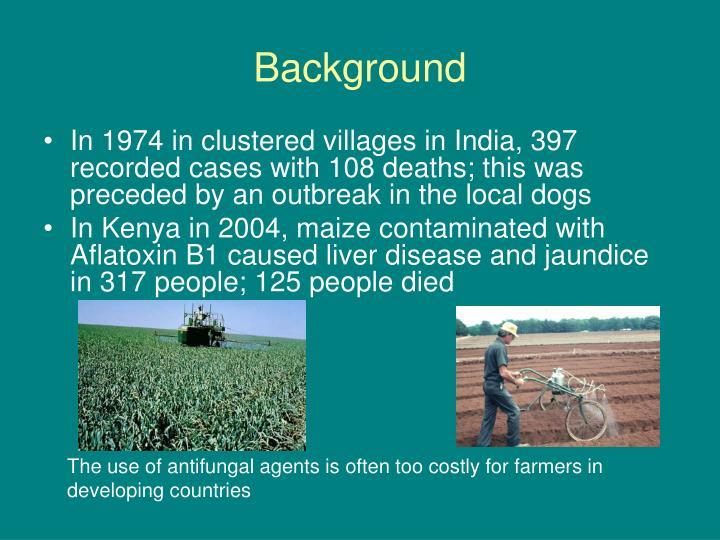 Maize Wallpaper For Presentation: Aflatoxin B1 PowerPoint Presentation