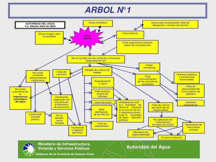 ARBOL N°1