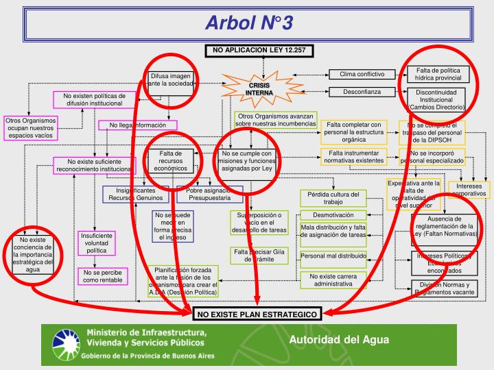 Arbol N°3
