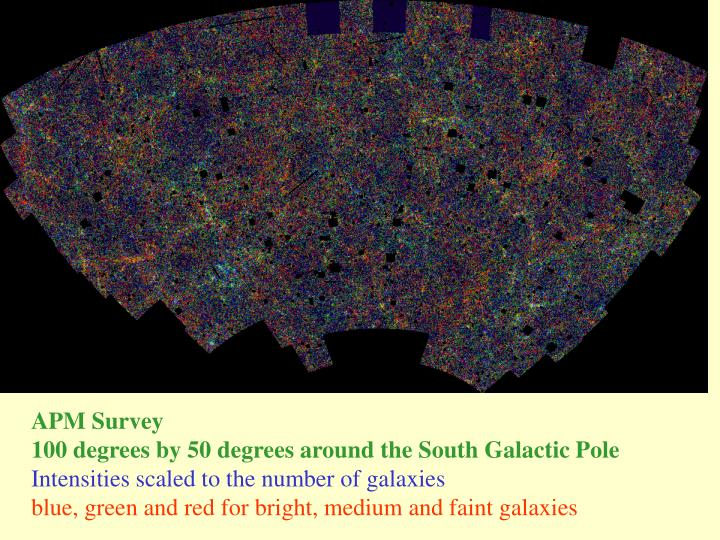 APM Survey