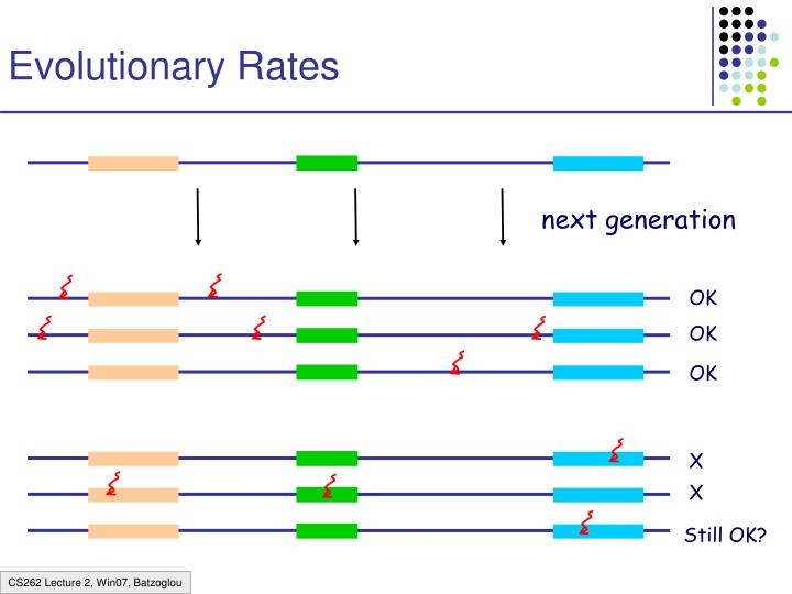 Evolutionary Rates