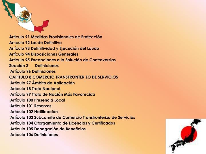Artículo 91 Medidas Provisionales de Protección
