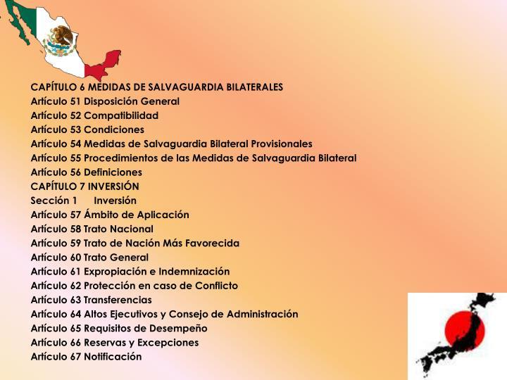 CAPÍTULO 6 MEDIDAS DE SALVAGUARDIA BILATERALES