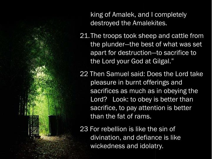 king of Amalek, and I completely destroyed the Amalekites.