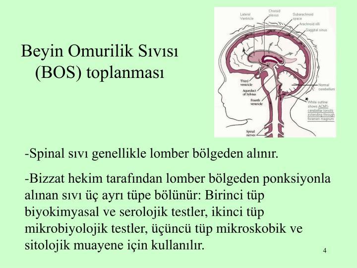 Beyin Omurilik Sıvısı (BOS) toplanması
