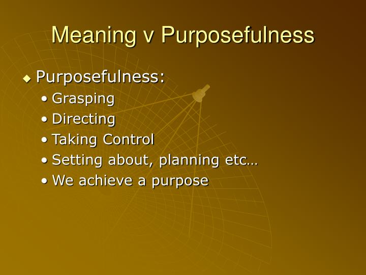 Meaning v Purposefulness