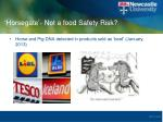 horsegate not a food safety risk