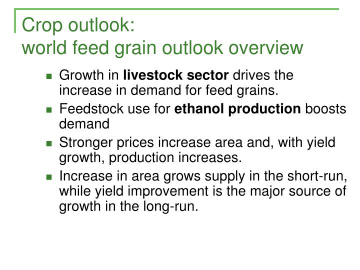 Crop outlook: