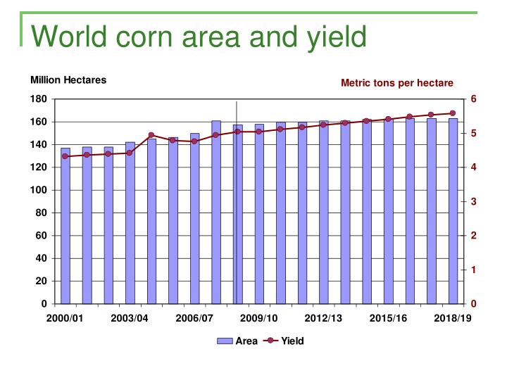 World corn area and yield