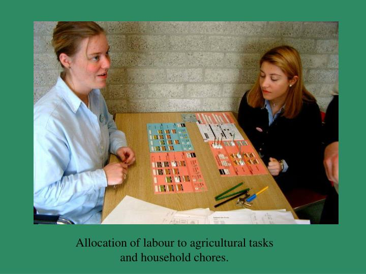 Allocation of labour to agricultural tasks