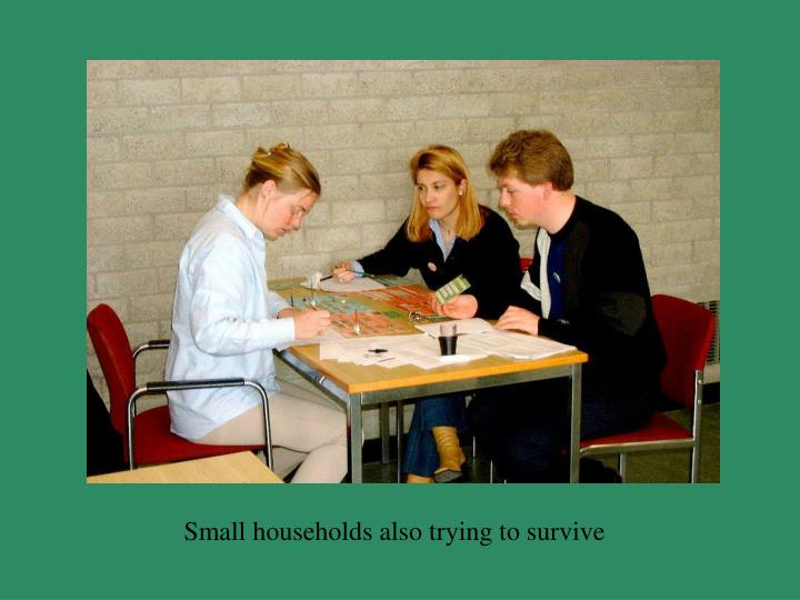 Small households also trying to survive
