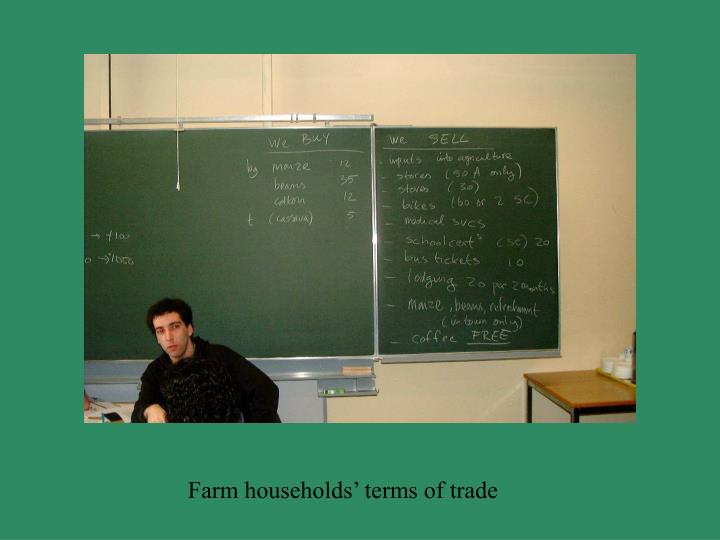 Farm households' terms of trade