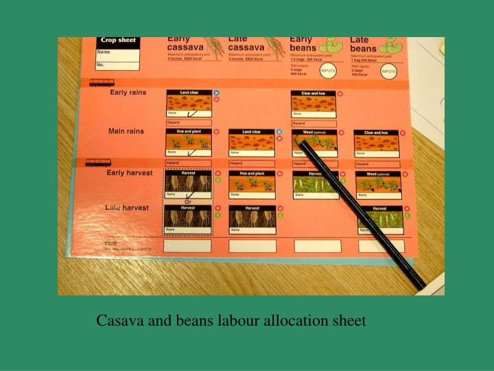 Casava and beans labour allocation sheet