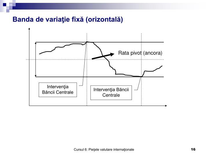 Intervenţia Băncii Centrale
