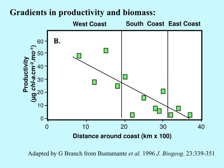 Gradients in productivity and biomass: