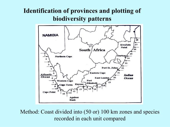 Identification of provinces and plotting of biodiversity patterns